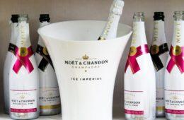 vini per fare lo Champagne tipi di champagne, champagne italiano zone di produzione dello Champagne