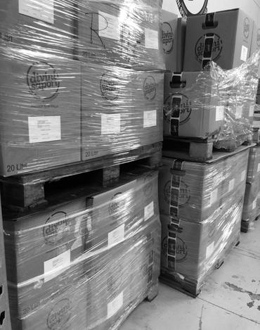 magazzino vino bag in box